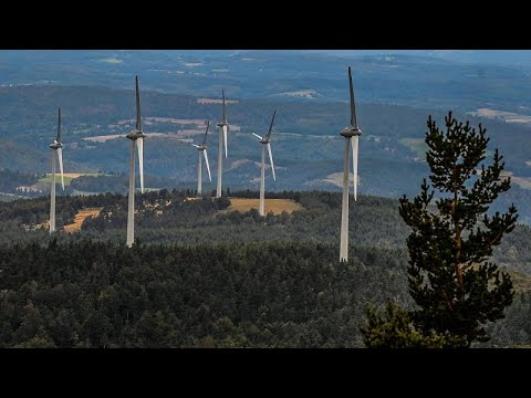 EU Green Week: Here's Europe's plan to be first carbon-neutral continent