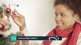 D'CASA P41 Michelle Benitez