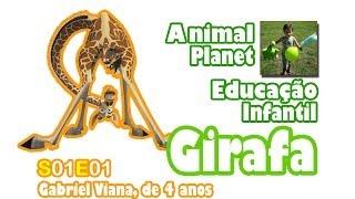 Educação Infantil - A Girafa - criança de 4 anos apresenta espontaneamente um animal [E01S01]