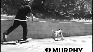"Dan Murphy Zero ""New Blood"""