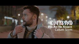 Calum Scott - You Are The Reason 因為你 (中文字幕MV)