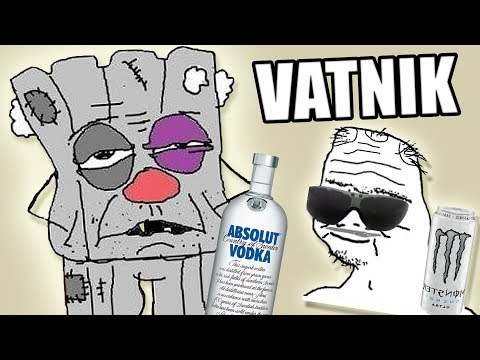 What is a VATNIK? (The Russian BOOMER)