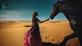 Gipsy Kings - Amor Mio