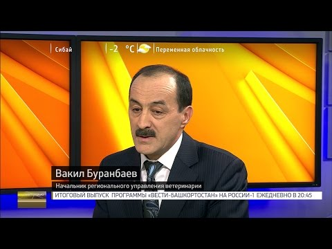 Вести. Интервью - Вакил Буранбаев