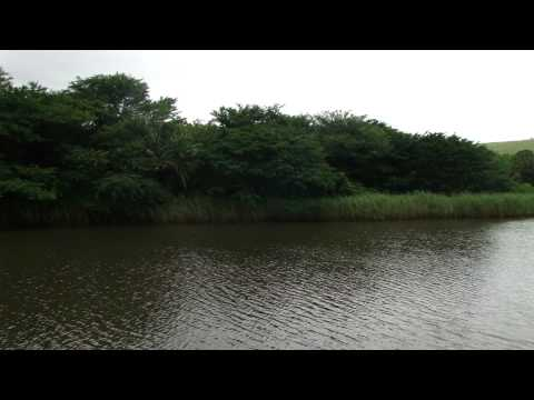 Umhlanga Lagoon Nature Reserve part 1