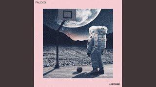 Falcko - Laponie