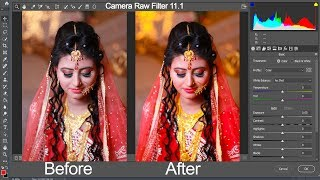 How to download and install camera raw filter vs 10 5 for