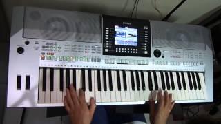 Fonte dos desejos - instrumental teclado Cover Arirrany (Renê e Ronaldo )