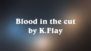 Blood in the Cut - K.Flay (Lyrics)