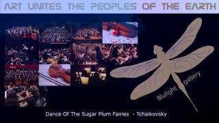 Dance Of The Sugar Plum Fairies - Tchaikovsky