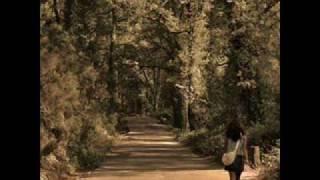 A Caminho de Viseu - Flauta Mágica - Músicas Populares Portuguesas