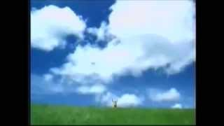 Windows XP Commercial