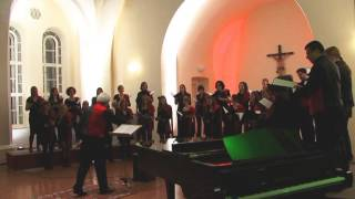 Capella Cantabile singt  Sloop John B.