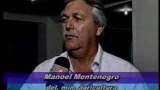 Licenciamento - 31-01-03 - TV Ponta Negra