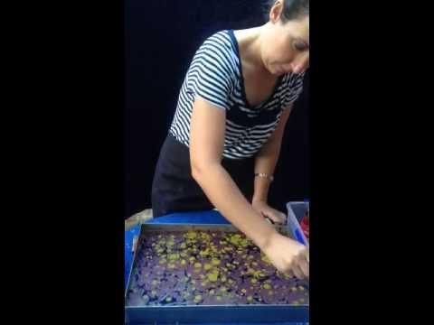 Mandurah Marbling Australia vesile Yilmaz Vicky