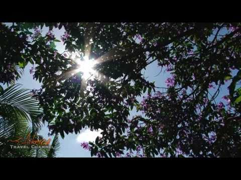 Duikerfontein B&B Accommodation Durban South Africa – Visit Africa Travel Channel