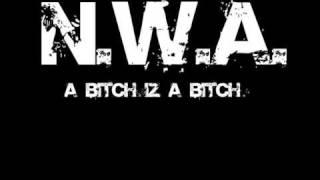 N.W.A. - A Bitch Iz A Bitch - With Lyrics