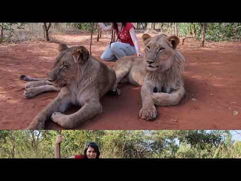 02 Mira's Adventures in Africa