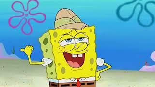 Sponge Your Enthusiasm