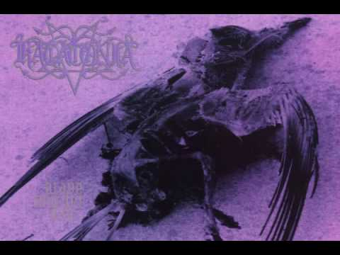katatonia-day-linkhoochoon3