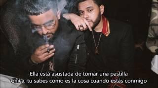 NAV - Lonely (Subtitulado en Español)