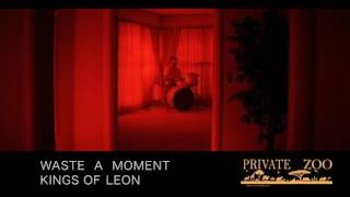 WASTE A MOMENT   KINGS OF LEON cover by private zoo