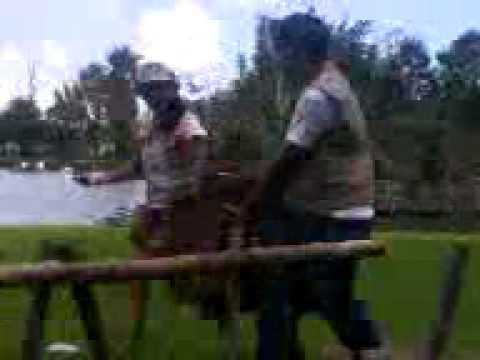 Visita a AFRICAN SAFARI  (SHOW DE AVES) Campamento Infantil – Rivera Anaya Part-1