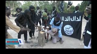 Boko Haram Series width=