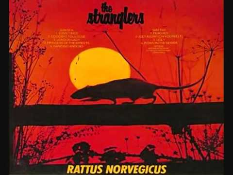 Down In The Sewer de Stranglers The Letra y Video