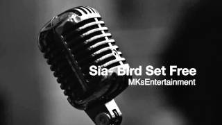 Sia - Bird Set Free Instrumental