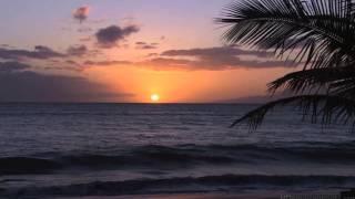 Relight Orchestra - Elegibo (Dj Black Light Remix)