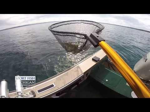 Fall Bass Fishing in Michigan with Sport Fish Michigan