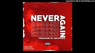 Salsalino - Never Again (Prod By Architekz)