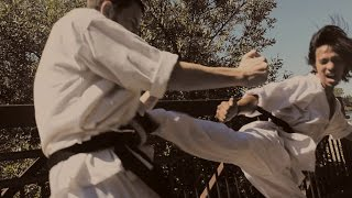 Black Belt Taekwondo/Karate Style Fight Scene