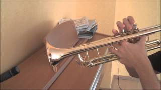 Linkin Park - In My Remains (trumpet acoustic cover)