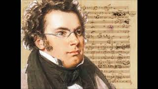 Schubert's Fantasy in F minor - remix - (trance)