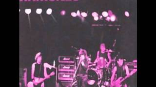 I Wanna Be Sedated - Ramones - Live in Amsterdam 1986