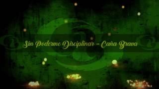 Sin poderme disciplinar - CAÑA BRAVA (Audio)