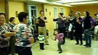 Paulo Dias   Passarinhos a Bailar