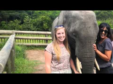 ISV SOUTH AFRICA 2012-2013