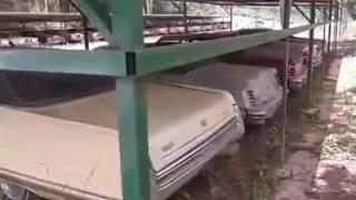 Incrível coleção de carros antigos