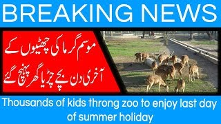 Thousands of kids throng zoo to enjoy last day of summer holiday | 5 August 2018 | 92NewsHD