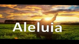 Aleluia (guitarra-COVER)