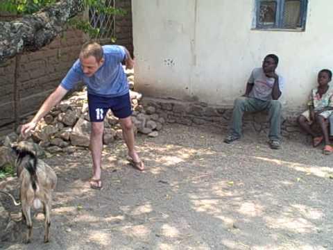 My Neighbors in the Congo II