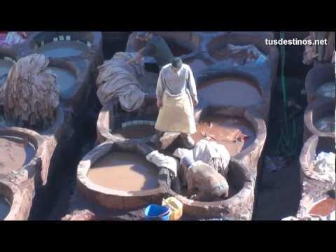 Marruecos turismo, curtidores piel / Morocco tourism, leather tanners / Fez La medina, artesanos Fès
