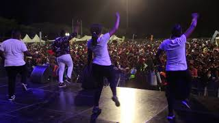 DJ Tira   Malume ft Tipcee and Joejo Live Video at INK HOP FESTIVAL