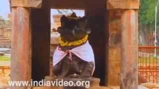"Nandi Shrine Lord Shiva ""brihadeeswara temple"""