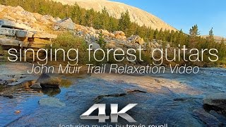 "4K John Muir Trail Relaxation: ""Singing Forest Guitars"" Nature Music Video ft Travis Revell"