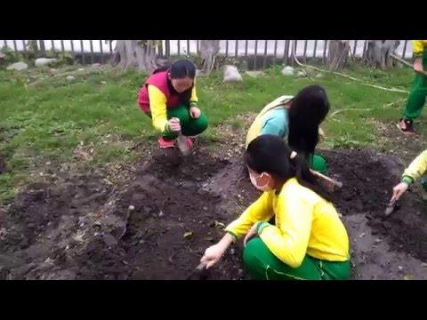 整理教學農園 - YouTube