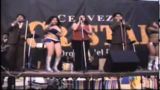 bahia musical (3) (10) salsa cobarde cobarde bahia musical en vivo